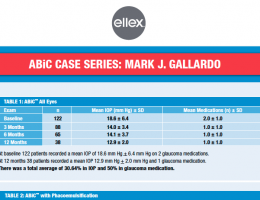 abic-case-results-gallardo