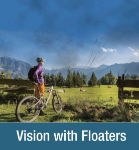 Vision floaters